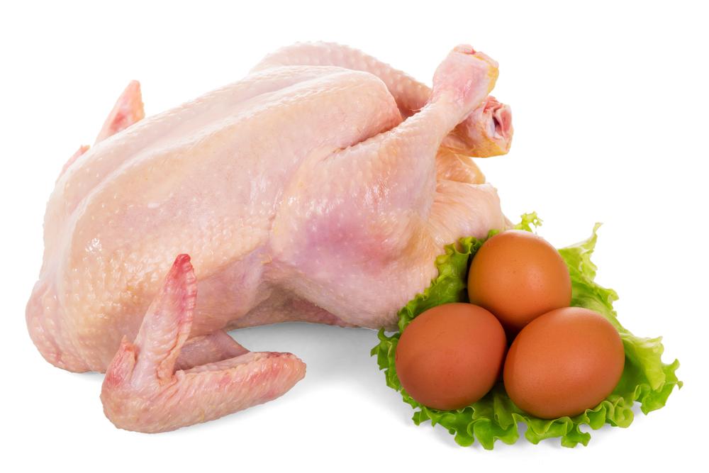 Tips Bisnis Karkas Ayam