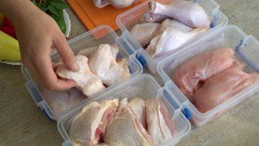 bagian-bagian karkas ayam